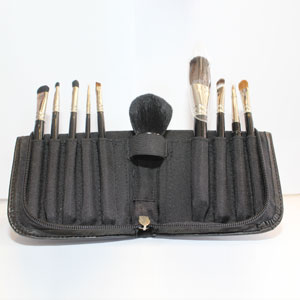 ELSPA Brush set and case